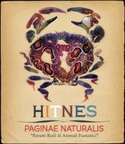"""""""Paginae Naturalis"""" di Hitnes al Museo Civico di Zoologia di Roma"""