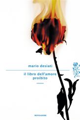 """""""Il libro dell'amore proibito"""" di Mario Desiati"""