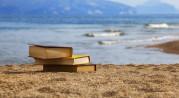 Un'estate lunga un libro