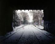 Il profumo della neve