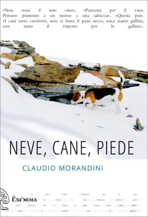 neve_cane_piede_ClaudioMorandini_recensione_flaneri.com