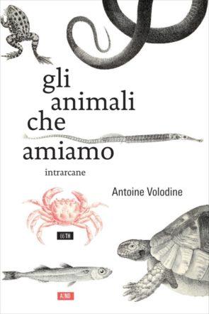Copertina di Gli animali che amiamo di Antoine Volodine