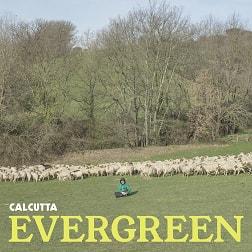 copertina evergreen su flaneri