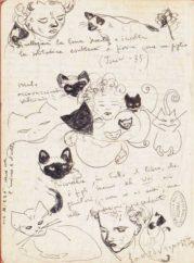 Sensibilità collettiva e fisionomia letteraria: il gatto